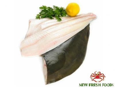Cá Bơn Fillet