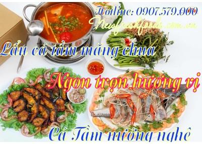 Ngon Trọn Hương Vị Cùng Cá Tầm Nướng Nghệ Và Lẩu Cá Tầm Măng Chua